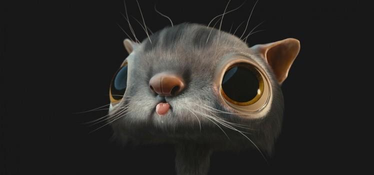cat honte