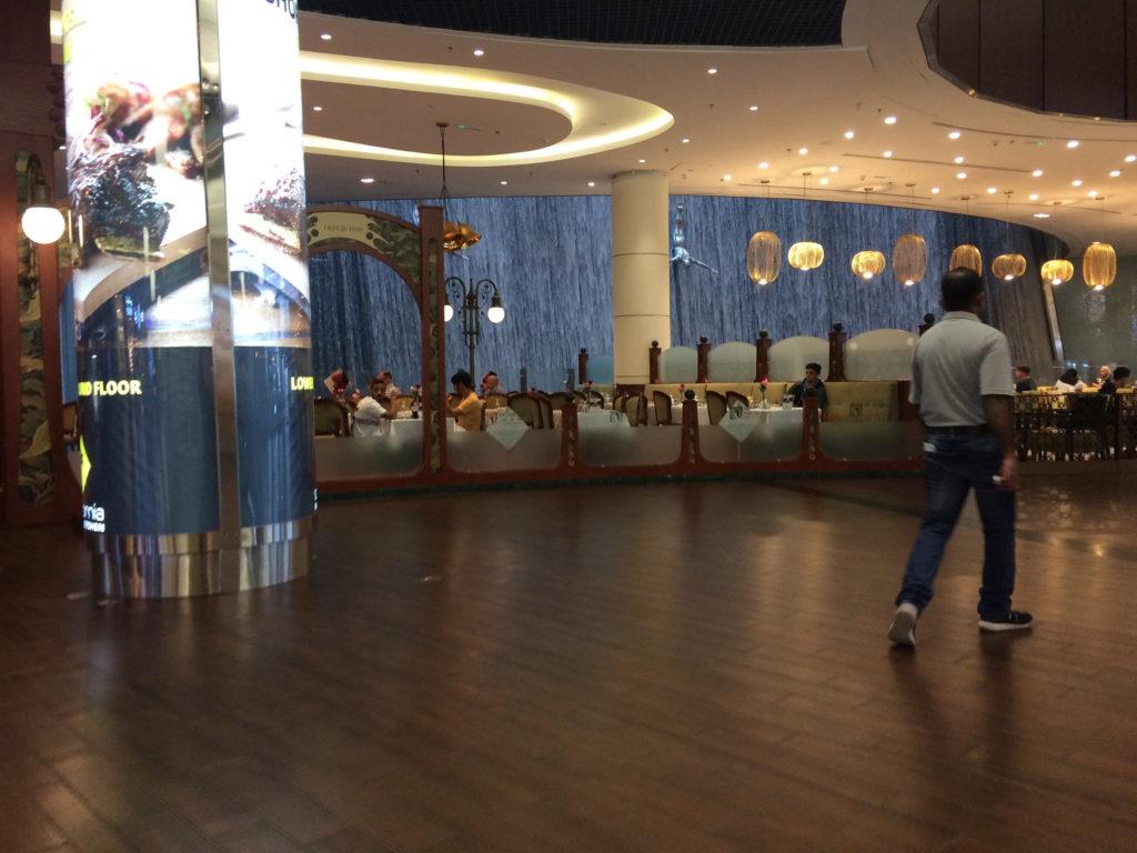Dubaï mall2